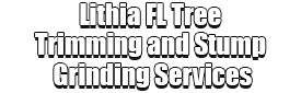 Lithia FL Tree Trimming and Stump Grinding Services Logo-We Offer Tree Trimming Services, Tree Removal, Tree Pruning, Tree Cutting, Residential and Commercial Tree Trimming Services, Storm Damage, Emergency Tree Removal, Land Clearing, Tree Companies, Tree Care Service, Stump Grinding, and we're the Best Tree Trimming Company Near You Guaranteed!
