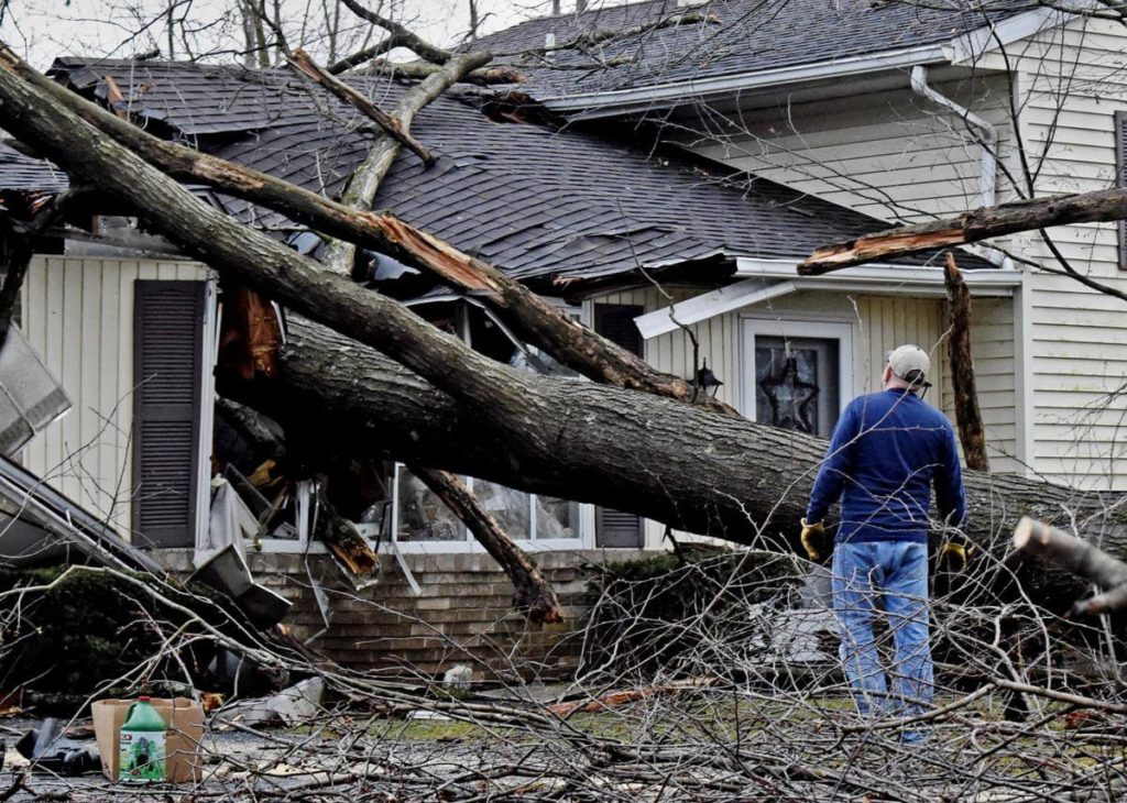 Storm Damage-Lithia FL Tree Trimming and Stump Grinding Services-We Offer Tree Trimming Services, Tree Removal, Tree Pruning, Tree Cutting, Residential and Commercial Tree Trimming Services, Storm Damage, Emergency Tree Removal, Land Clearing, Tree Companies, Tree Care Service, Stump Grinding, and we're the Best Tree Trimming Company Near You Guaranteed!