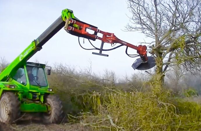 Tree Trimming Services-Lithia FL Tree Trimming and Stump Grinding Services-We Offer Tree Trimming Services, Tree Removal, Tree Pruning, Tree Cutting, Residential and Commercial Tree Trimming Services, Storm Damage, Emergency Tree Removal, Land Clearing, Tree Companies, Tree Care Service, Stump Grinding, and we're the Best Tree Trimming Company Near You Guaranteed!